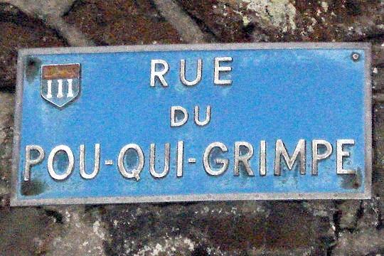 rue-po10